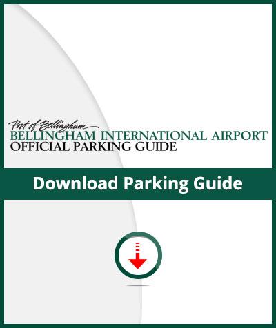 bli-download-info